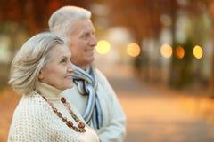 Старшие пары в парке осени Стоковые Изображения RF