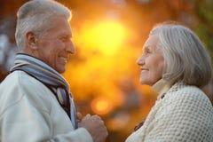 Старшие пары в парке осени Стоковые Изображения
