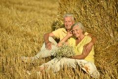 Старшие пары в поле Стоковое Изображение