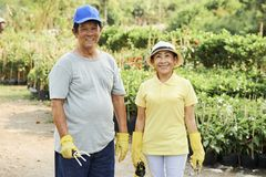 Старшие пары в саде стоковые фото