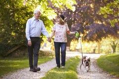 Старшие пары идя с бульдогом любимчика в сельской местности стоковая фотография