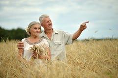 Старшие пары на поле лета Стоковое фото RF