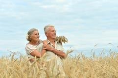 Старшие пары на поле лета Стоковые Изображения