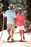 Старшие пары на прогулке страны Стоковая Фотография