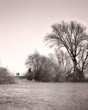 Старшие пары на прогулке вдоль берега реки Стоковое фото RF