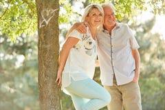 Старшие пары обнимая под деревом Стоковое Изображение RF