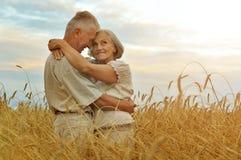 Старшие пары отдыхая на поле лета Стоковые Изображения