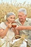 Старшие пары отдыхая на поле лета Стоковые Фотографии RF