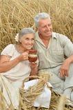 Старшие пары отдыхая на поле лета Стоковая Фотография RF