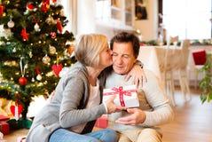 Старшие пары перед рождественской елкой с настоящими моментами Стоковое Фото