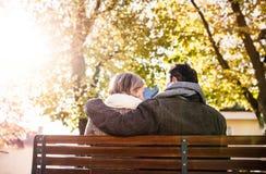 Старшие пары сидя на стенде, природе осени изолированная белизна вид сзади Стоковые Изображения RF