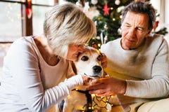 Старшие пары с собакой перед рождественской елкой Стоковая Фотография