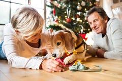 Старшие пары с собакой перед рождественской елкой Стоковое фото RF
