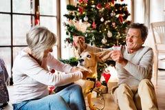 Старшие пары с собакой перед рождественской елкой Стоковое Изображение RF