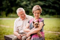 Старшие пары с собакой стоковая фотография