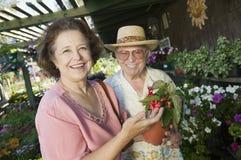 Старшие покупки пар для цветков на портрете питомника завода Стоковое фото RF