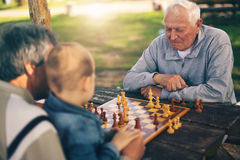 Старшие люди имея потеху и играя шахмат на парке Стоковое Фото