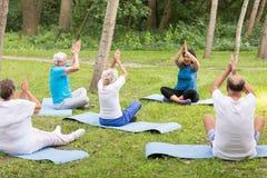 Старшие люди и женщины делая йогу Стоковые Фотографии RF
