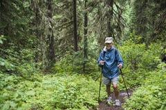 Старший активный hiking человека Стоковые Изображения RF