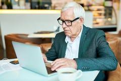 Старший бизнесмен используя компьтер-книжку в кафе стоковая фотография