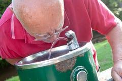Старший выпивать от фонтана стоковые фотографии rf