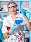 Старший техник в химической лаборатории Стоковая Фотография