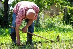 Старший мужской садовник стоковые фото