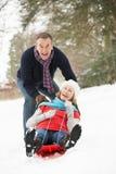старший пар sledging снежное полесье стоковые фото