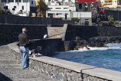 Старший рыболов и его рыбная ловля собаки на пристани Стоковые Изображения