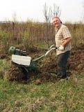 старший садовника Стоковые Фотографии RF