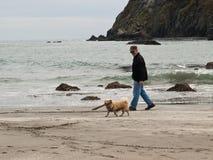 старший человека собаки пляжа Стоковые Фото