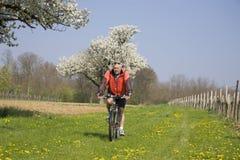 Старший человек на велосипеде Стоковые Фото