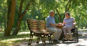 Старший человек с женщиной в кресло-коляске снаружи в парке сток-видео