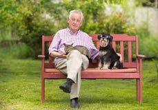 Старший человек с любимчиками стоковое фото rf