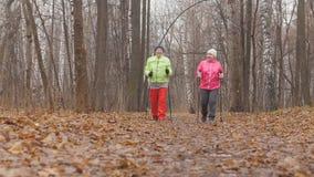 2 старших женщины в парке осени имеют нордический идти среди парка осени холодного - вид сзади Стоковые Фото