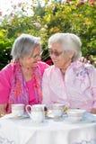 2 старших женщины говоря над чаем в саде Стоковое Изображение