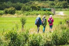 3 старших женщины идя на дорогу в сельской местности Стоковые Изображения
