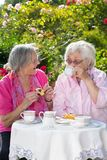 2 старших женщины сидя в саде над чаем Стоковая Фотография RF