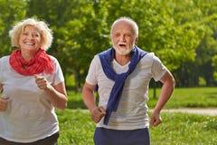 2 старших люд jogging в парке Стоковое Изображение RF