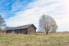 Старые амбар и дерево в поле травы Стоковые Изображения RF