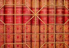 Старые античные книги за скрежетать Стоковая Фотография RF