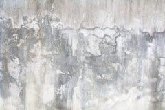 Старые белые стены с различными тенями Стоковое фото RF