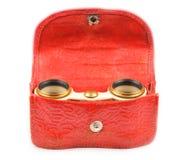 Старые бинокли и красный кожаный случай Стоковое Изображение RF
