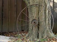 Старые большие колеса телеги против дерева Стоковая Фотография RF