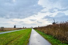 Старые ветрянки в Kinderdijk на восходе солнца, Голландии, Нидерландах, Eu Стоковые Изображения