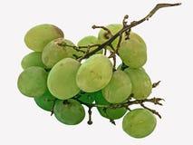 Старые виноградины Стоковые Изображения RF