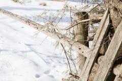 Старые деревянные обнести ландшафт зимы Стоковая Фотография