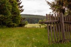 Старые деревянные обнесут забором лес стоковые изображения rf