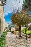 Старые дома в Иерусалиме Стоковое Изображение RF