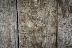Старые доски с заржаветыми штапелями Стоковое Фото
